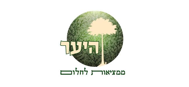 עיצוב לוגו - היער